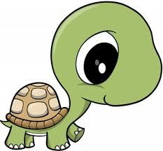 cute cartoon turtle