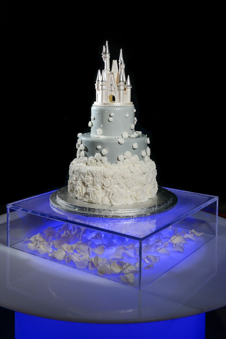 Even this couple's wedding cake had a little bit of glow to it! Photo: Jacob, Disney Fine Art Photography