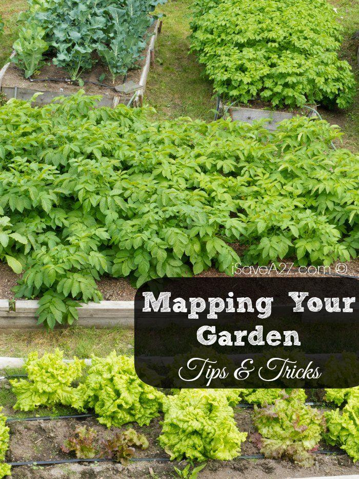45 best Flower gardens images on Pinterest Flower gardening