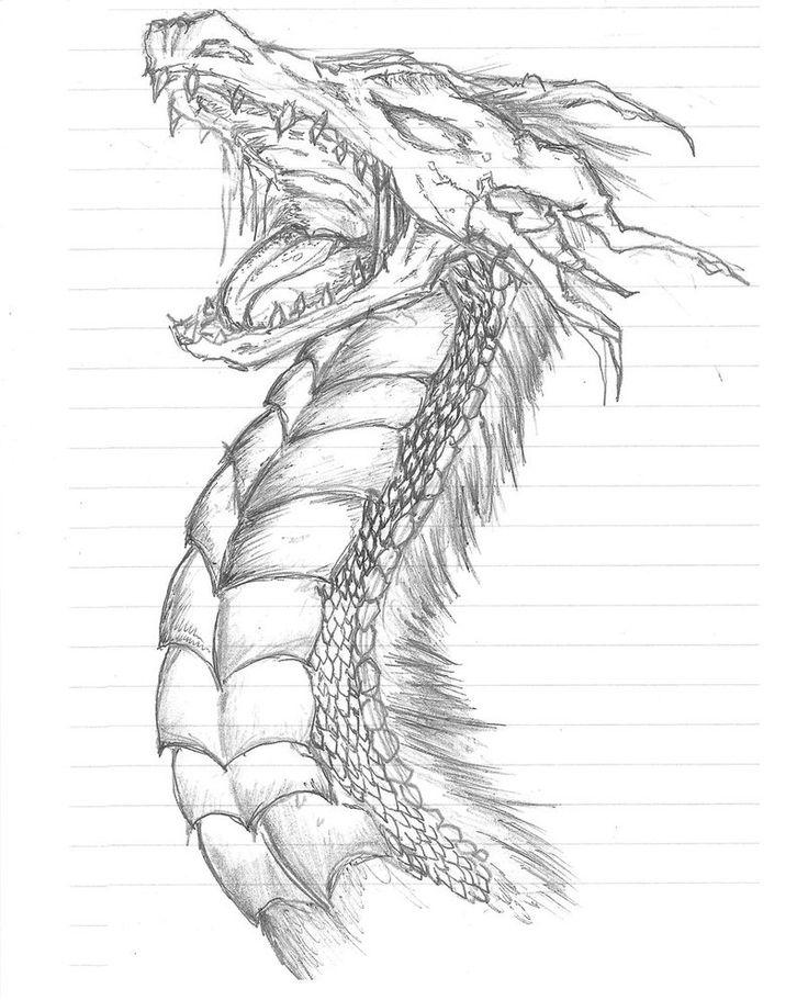 Dragon Sketch 1 by ~EvilCupcake696 on deviantART