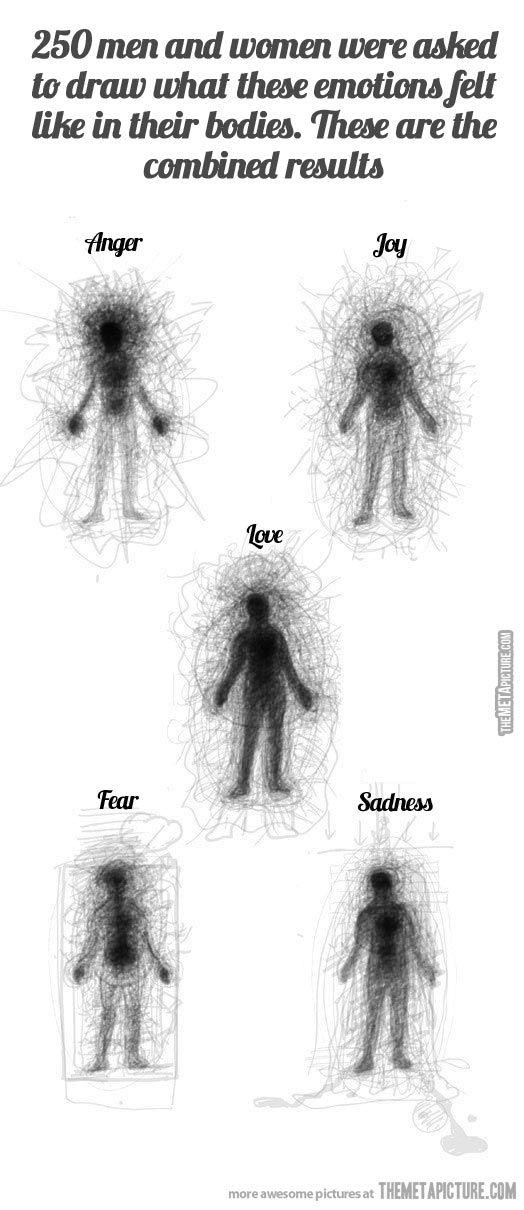 How people feel emotions in their bodies…