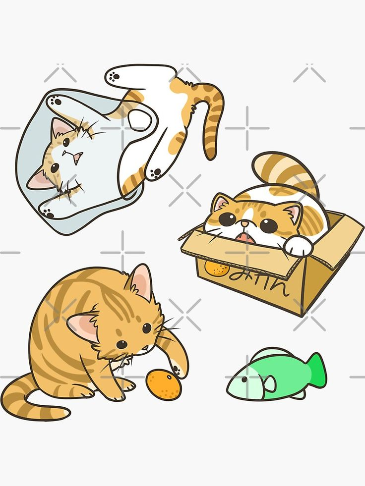 Orange And White Cats Sticker By Pawlove In 2021 Cat Stickers White Cat Stickers Orange And White Cat
