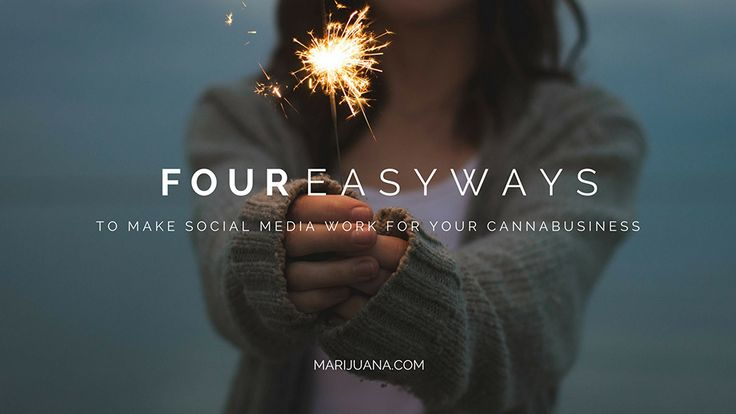 4 Easy Ways to Make Social Media Work for Your Cannabusiness