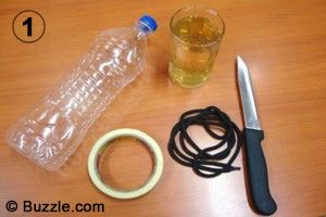 Make your own wasp trap.