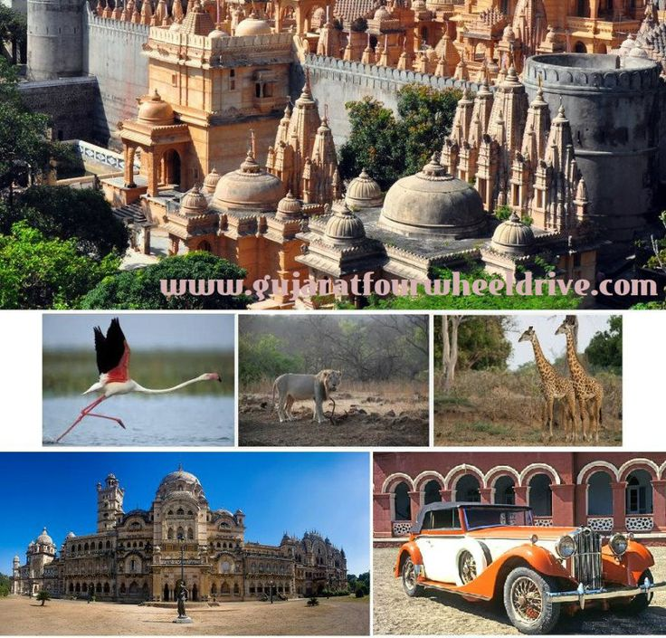 #Holidays in #Gujarat? Find the complete list of Gujarat #tour packages that will help to make you tour #memorable ever in this summer #vacations? See more bit.ly/1A1DDxc