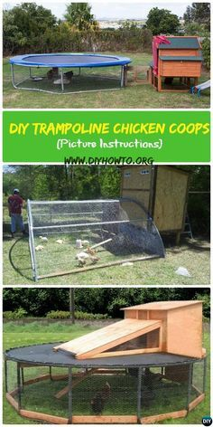 DIY Trampoline Chicken Coop [Picture Instructions] Give your old trampoline a new life by aborning it into a fun and effective chicken coop