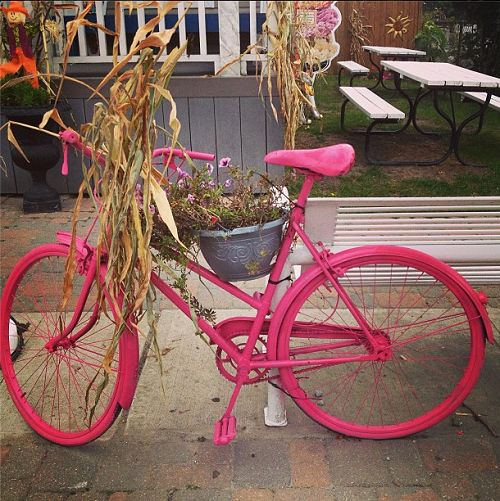 Local Travel: Toronto September Instagram Photos | Colourful bikes at Frenchman's Bay in Pickering, Ontario - KidsOnAPlane.com #IGTravelThursday #ontario #fall  #Pickering #MLI #ESL #LearnEnglish #Canada #ON #Homestay #StudyinCanada