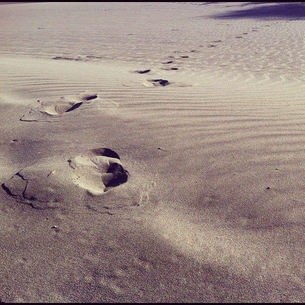 sandsteps: Sandstep, Franjavier7 Photos