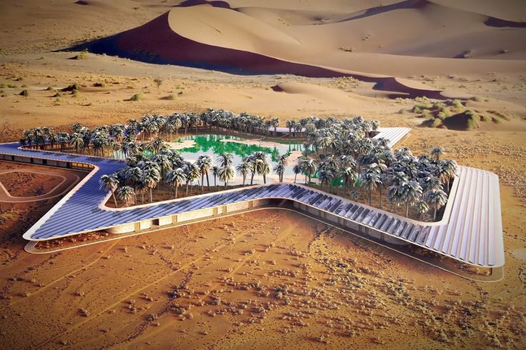 Designed around a spring in the United Arab Emirates, the Oasis Eco Resort is striving to be the world's greenest of its kind. The spring is surrounded by 84 suites, providing waterfront views for every room, as well as serving...