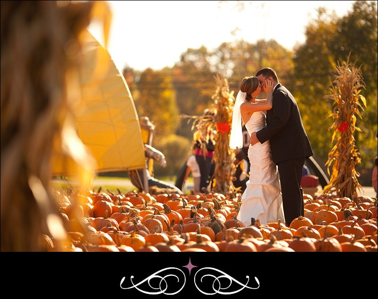 Pumpkin patch wedding pictures?  Win.  #photography    absolutely beautiful