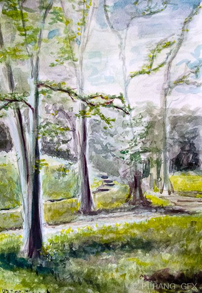 Phototric design and photography: Drawing lessons - 2 - painting in the park