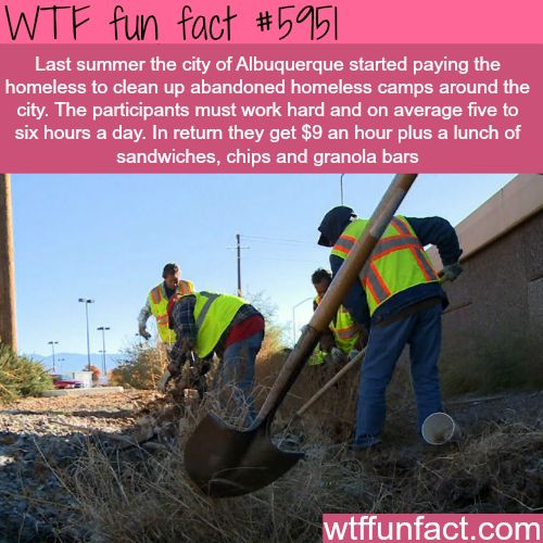 This city pays the homeless $9 an hour for cleaning - WTF fun facts
