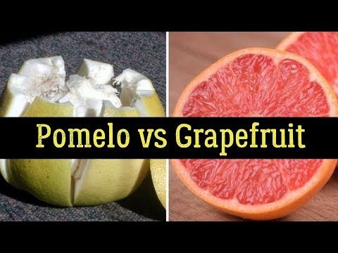 Pomelo vs Grapefruit – Nutrition Facts, Health Benefits, Side Effects
