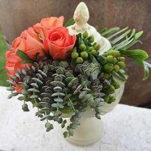 The Orange Magic Roses