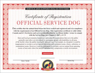 canadian service dog emotional and therapy service dog vest and id card kits infographic. Black Bedroom Furniture Sets. Home Design Ideas
