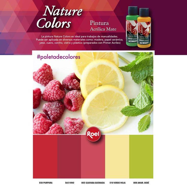 #Paletadecolores #NatureColors