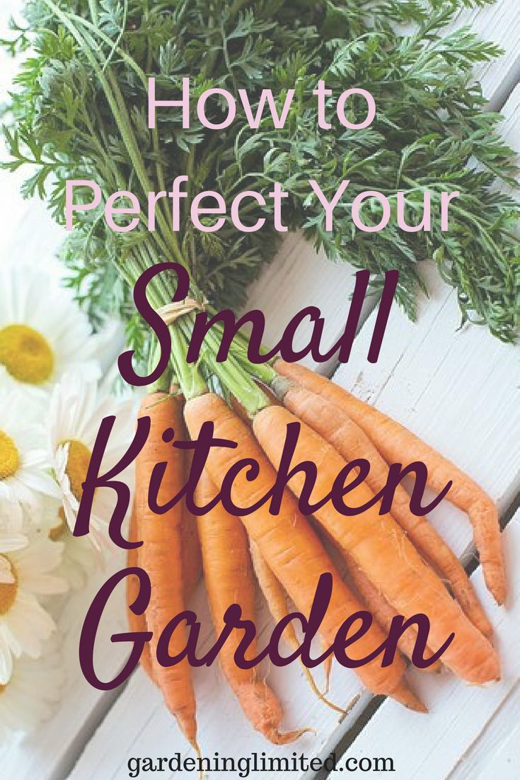 Do you have a small kitchen garden or are thinking of starting one? Here are some great tips on how to perfect your small kitchen garden! #vegetables #vegetablegarden #fruits #herb #verticalgarden #gardening