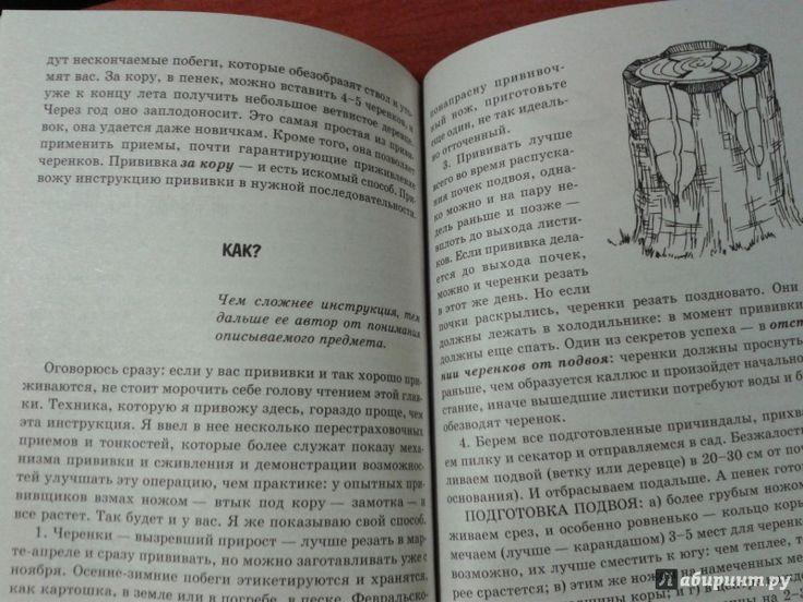 Иллюстрация 9 из 12 для Умный сад в подробностях - Николай Курдюмов | Лабиринт - книги. Источник: v