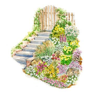 Easy slope garden.  Free Planting Guide for this garden a detailed layout diagram, a list of plants for the garden as shown, and complete instructions for installing the garden.