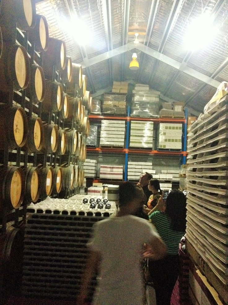 Touring the sheds at Witches Falls Winery on Mt Tamborine