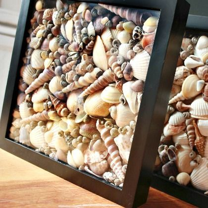 DIY Sea Shell Shadow Box