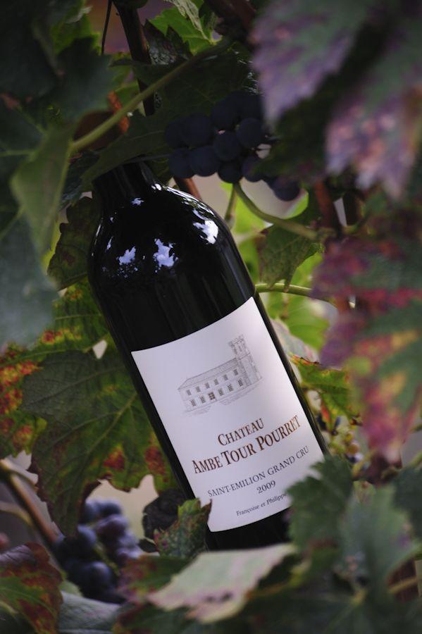 Vin du Château Ambe Tour Pourret, Propose la visite et la dégustation, Bordeaux, Saint Emilion  http://bordeaux.winetourbooking.com/fr/propriete/chateau-ambe-tour-pourret-108.html