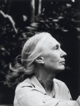 No one in the world is more closely identified with the movement to protect the natural world and the creatures with whom we share it. But Jane Goodall is happy to have a little help, and is nominating an entire generation of successors.