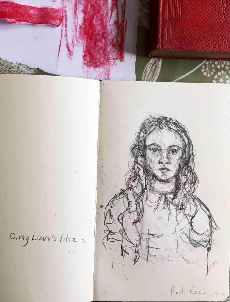 Red Rose  ~ sketchbook scribble