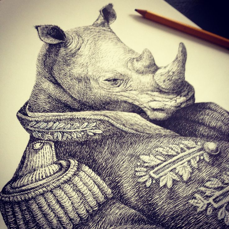 Rhinoceros illustration for Zoologist Perfumes' Rhinoceros bottle label  #nicheperfume #perfume #rhino