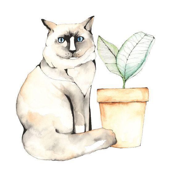 Cat Portrait, A4 print, 21cm x 29.5cm, unframed
