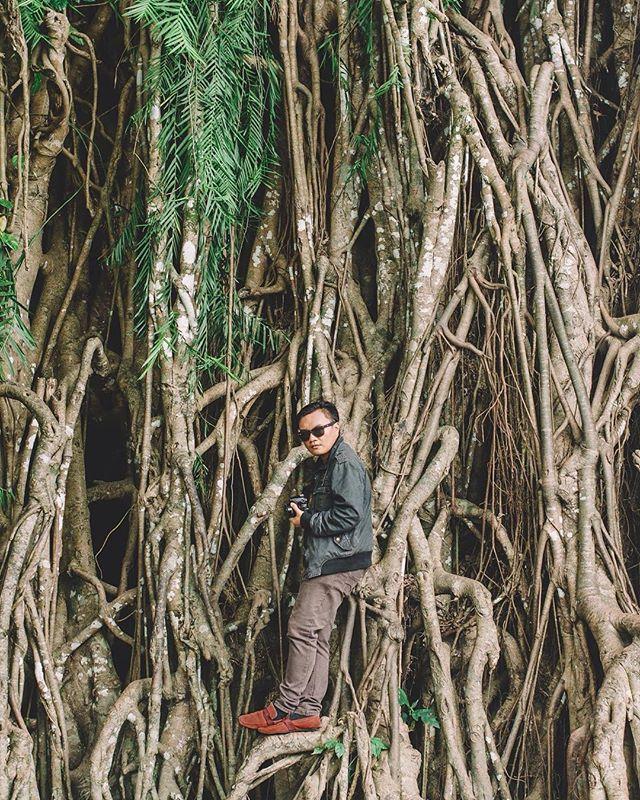 When in Baler. #baler #milleniumtree #travel #balete #wheninbaler #instatravel #travelgram #traveling #instagood #wanderlust #ilovetravel #igtravel #mytravelgram #visiting #aroundtheworld #instago #rvtrip #rvt #travelpics #travelandlife #streetstyle #travelph #philippines #potd #ig #instagood #instagram #jacket
