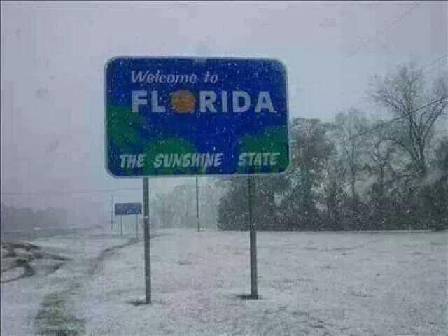 Fulgi de zapada in nordul Floridei   Florida.International