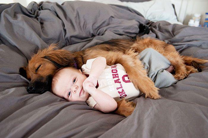 20 photos qui montrent la merveilleuse complicité animaux/enfants ! Trop cute ! - Images - Les images les plus mignonnes du Web - Plein de videos et photos trop cute et trop mignon