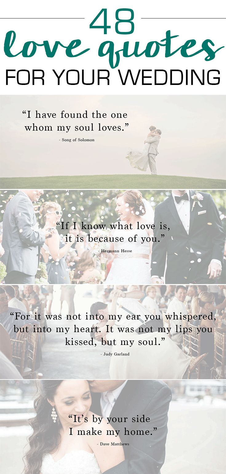 48 love quotes. Not even necessarily for a wedding but for any reason to tell your loved ones how much you mean to them.