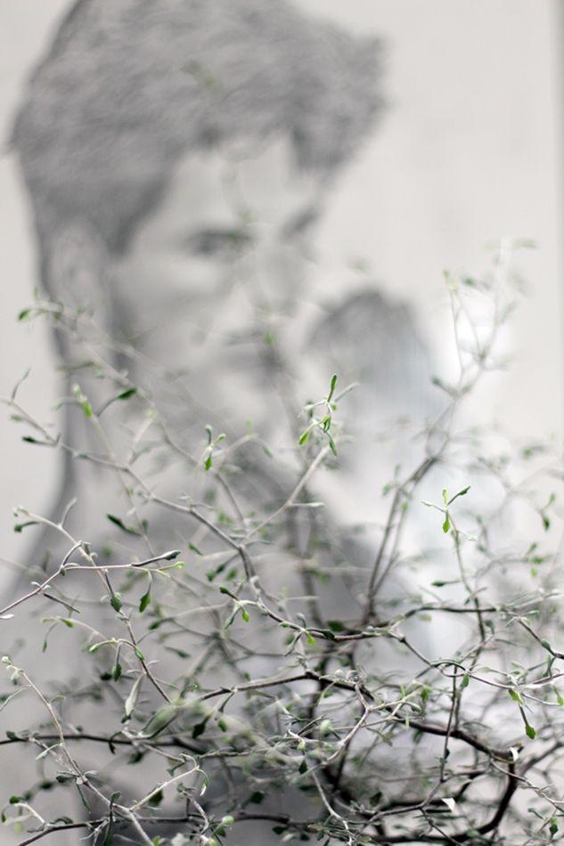 Plants and Art #urbanjunglebloggers Zickzackstrauch