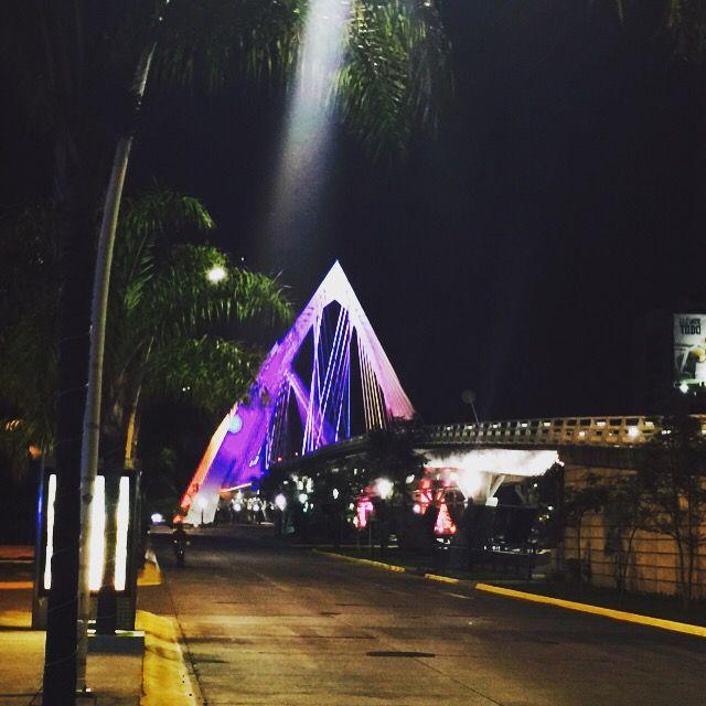 puente matute ramos guadalajara mxico