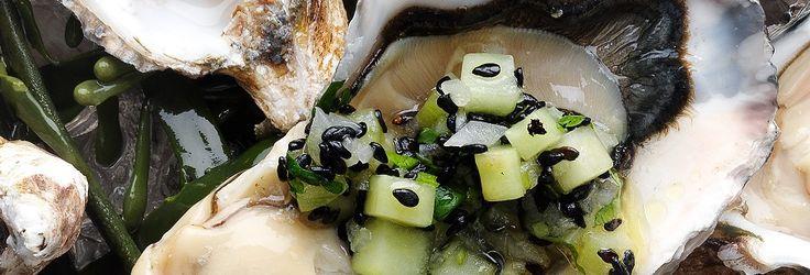 Hemkop.se | Ostron med lime, gurka och koriander