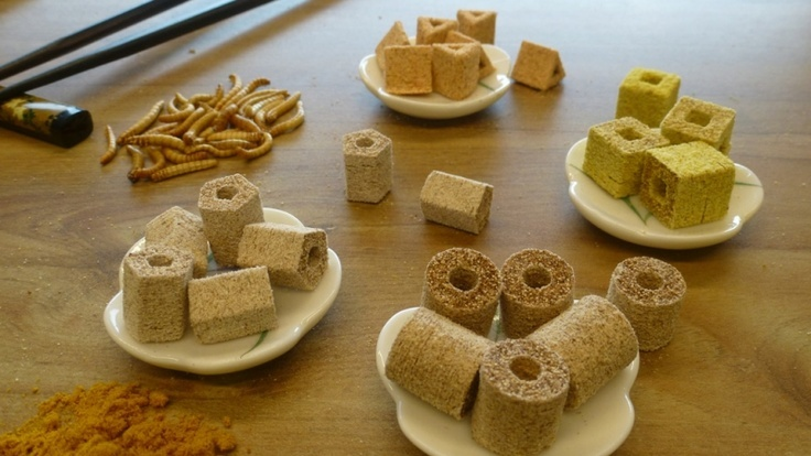 3D printed food by TNO Netherlands