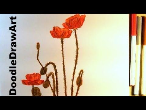 ▶ How To Draw Poppies for Remembrance/Veterans Day - Art Tutorial - Poppy HD - Crayons - YouTube