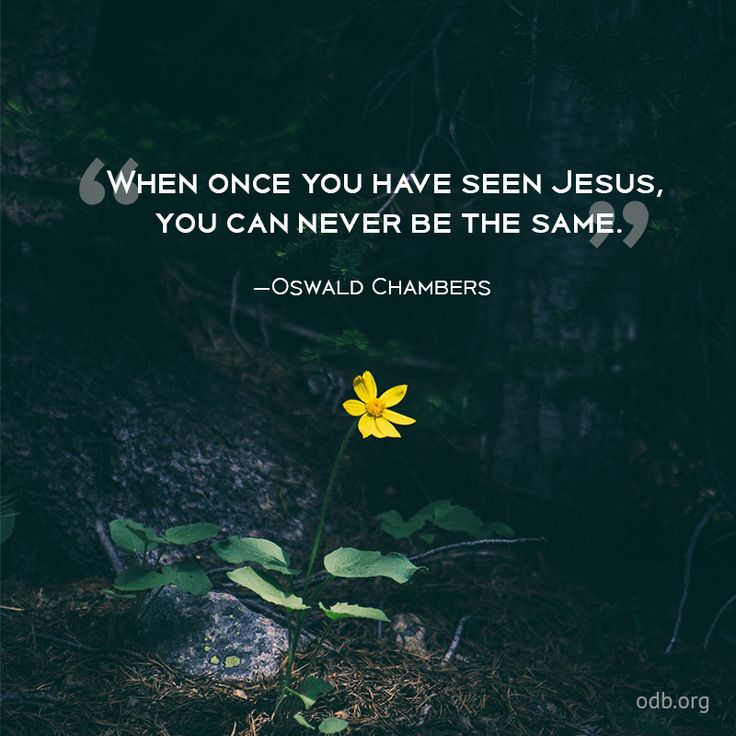 "When once you have seen Jesus, you can never be the same. —Oswald Chambers ~ From time to time, we read of people who are offended at not being treated with what they consider due respect and deference. ""Do you know who I am?"" they shout indignantly. And we are reminded of the statement, ""If you have to tell people who you are, you probably really aren't who you think you are."" The polar opposite of this arrogance and self-importance is seen in Jesus, even as His life on earth was nearing…"