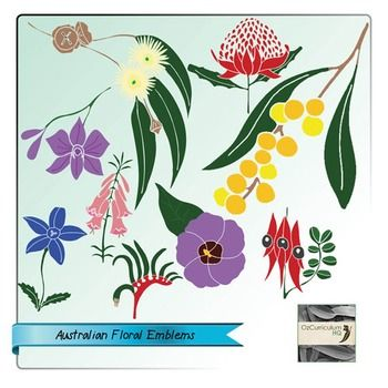 Each state and territory of Australia has a floral emblem. Help your class to learn about them with this clipart set.