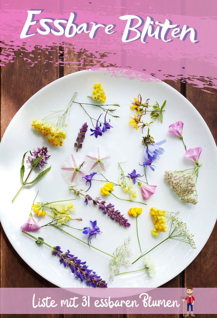 Essbare Blüten | Blumen in der Küche
