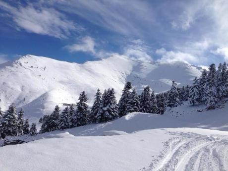 Καλάβρυτα: Λευκά Χριστούγεννα στα ορεινά - Ασπρισαν τα πάντα στον Χελμό - Το έστρωσε για τα καλά απο χθες - ΔΕΙΤΕ ΦΩΤΟ - Κοινωνία - The Best News