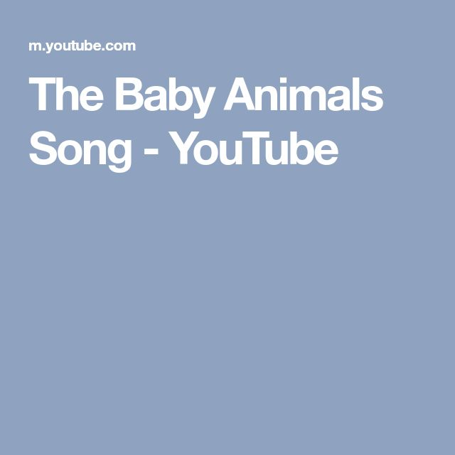 The Baby Animals Song - YouTube