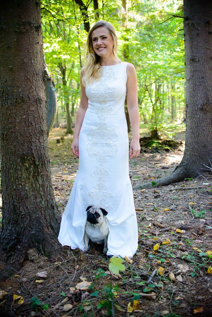 One bride one pug