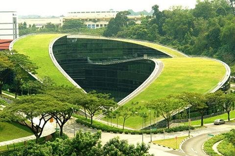 Amazing Green Roof Art School in Singapore