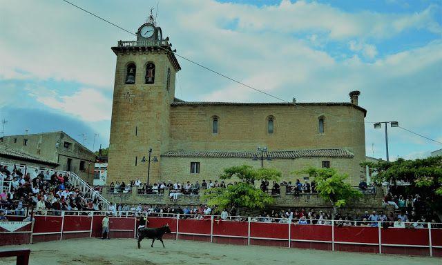 Santacara: Vacas de Santos Zapateria - (1)