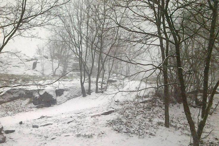 Winter 2014 at wooden Vallila