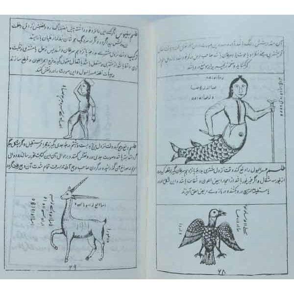 Islamic Naqsh