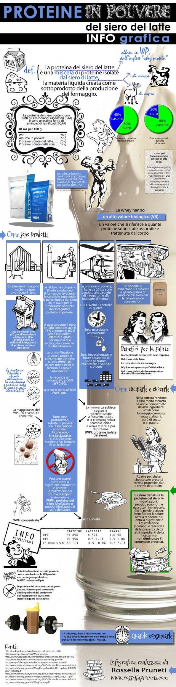 Proteine in polvere del siero del latte Infographic